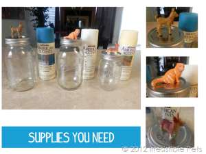 DIY-Pet-Treat-Mason-Jars-Supplies_thumb